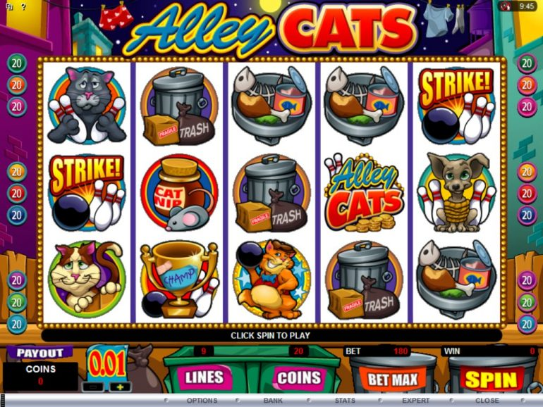 Charlie the Cat Slot - Play Online for Free or Real Money